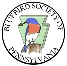 Bluebird Society of Pennsylvania